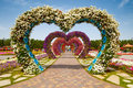 Miracle garden dubai uae march hearts way in dubai in the uae on march it has over million flowers Stock Photo