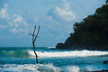Mirissa Stilt Fishing Coast Surf Wave Sri Lanka Stock Photography