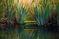 Mirror Lake sign New Zealand Royalty Free Stock Photo