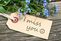 Miss you Royalty Free Stock Photo