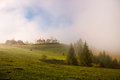 Mist at dawn over the pasture in the Carpathian Mountains. Royalty Free Stock Photo