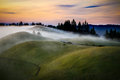 Mist over rolling green  hills at sunset Royalty Free Stock Photo