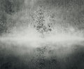 The mist a tree in with it s reflection in water and a forest on background in black and white Royalty Free Stock Images