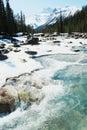 Mistaya creek and canyon Stock Photography