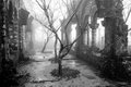 Mistery ruins of an old abandoned french monastery in the mist outside sapa vietnam Royalty Free Stock Images