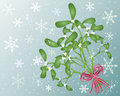 Mistletoe Royalty Free Stock Photography