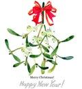 Mistletoe branch. Merry Christmas. Happy New Year.