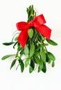 Mistletoe bunch Royalty Free Stock Photo
