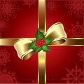 Mistletoe and ribbon Stock Images