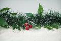 Mistletoe in Snow Royalty Free Stock Photo