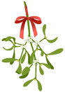 Mistletoe twig