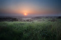 Misty calm sunrise over swamp with heather flowering Stock Photo