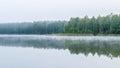 Misty gloomy morning near lake Royalty Free Stock Photo