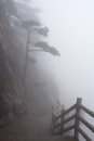 Misty morning in the huangshan mountain yellow mountain china of all notable mountains it is probably most famous Stock Images