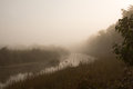Misty morning in jungle river in Nepal Royalty Free Stock Photo