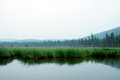 Misty morning on the lake. early summer morning. drizzling rain. Royalty Free Stock Photo