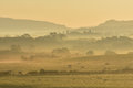 Misty orange sunrise with rural silhouettes and herd of cattle Royalty Free Stock Photos