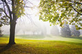 Misty outumn morning Royalty Free Stock Photo