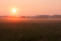 Misty sunrise in the august over a meadpw Stock Image