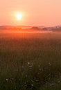 Misty sunrise in the august over a meadpw Stock Photography