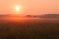 Misty sunrise in the august over a meadpw Royalty Free Stock Photo