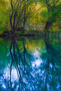 Misty swamp lake vibrant colours Stock Photo