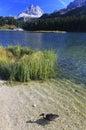 Misurina Lake Stock Photos
