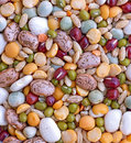 Mix bean Stock Image