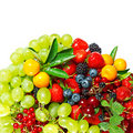 Mix of berries Stock Photography