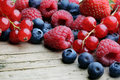 Mix of differrerent berrie close up Royalty Free Stock Image