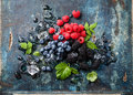 Mix of fresh berries with ice on blue wooden background Stock Image