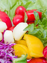 Mix fresh vegetables close up of Royalty Free Stock Images