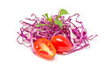 Mix fresh vegetables colorful Stock Photography