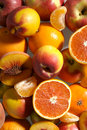 Mix Fruits Stock Images