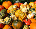 Mix of pumpkins a pile beautiful red yellow and striped Stock Photo