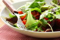 Mix salad (arugula, iceberg, red beet) Stock Photography