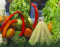 Mix vegetable the from shopping cart Stock Images