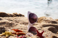 Mix of vivid starfishes on the beach and female sunglasses empty Royalty Free Stock Images