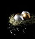 Mixed asset management concept image for financial gold and silver goose eggs in a grass birds nest against a black Stock Photos