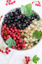 Mixed currants in a bowl selective focus Royalty Free Stock Photos