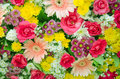 Mixed flora colorful of fresh flower bouquet Royalty Free Stock Photos