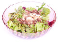 Mixed fresh tuna salad Royalty Free Stock Image
