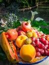 Mixed fruit tray Royalty Free Stock Photo