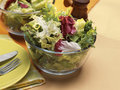 Mixed lettuces in a salad bowl Royalty Free Stock Images