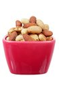 Mixed Nuts in Bowl Royalty Free Stock Photo