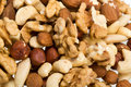 Mixed nuts hazelnuts walnuts cashews pine isolated on white background Royalty Free Stock Photos