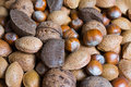 Mixed nuts in the shell selection of brazil almonds walnut and hazelnuts Royalty Free Stock Photo