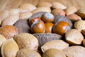 Mixed nuts in the shell selection of brazil almonds walnut and hazelnuts Stock Photo