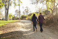 Mixed race couple walking in a park holding hands, back view Royalty Free Stock Photo