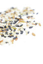 Mixed rices Royalty Free Stock Photo